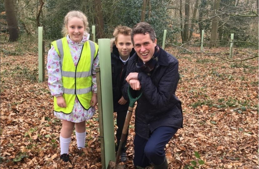 Gavin plants trees with the Kinver Rotary Club