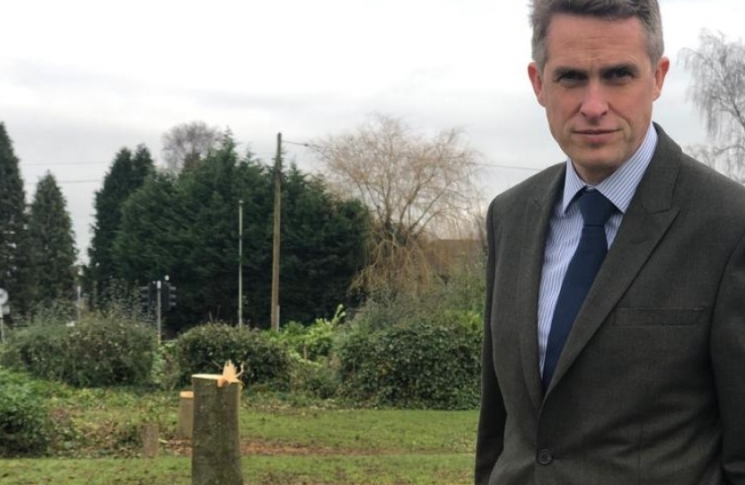 Gavin Williamson MP, standing my felled trees at the offices of South Staffordshire Council